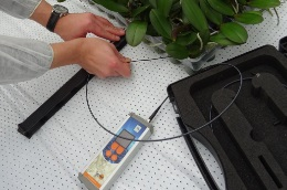 How can the level of oxygen in a plant's root be measured?