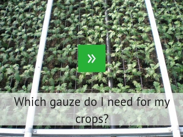 Which gauze do I need for my crops?