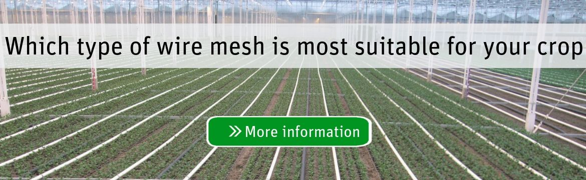Which wire mesh is most suitable for your crop