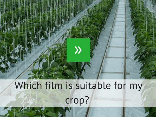 Which film is suitable for my crop?