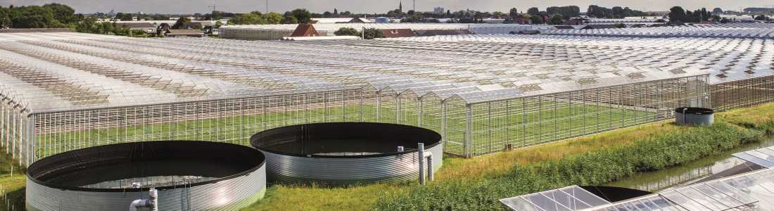 Rainwater drainage in horticulture