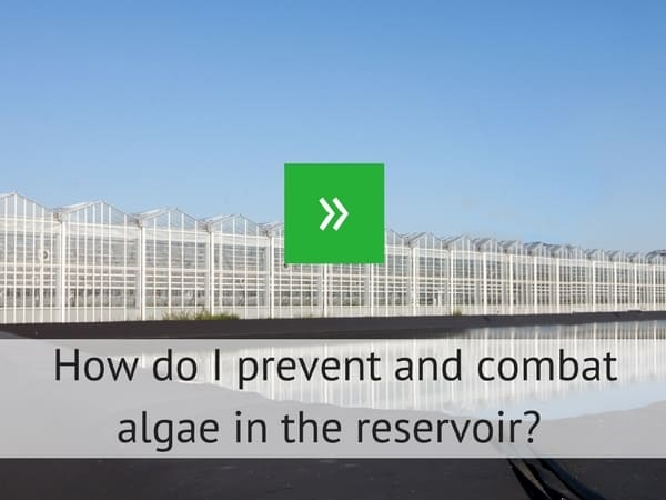 How do I prevent and combat algue in the reservoir?