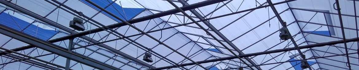 Greenhouse shading paint