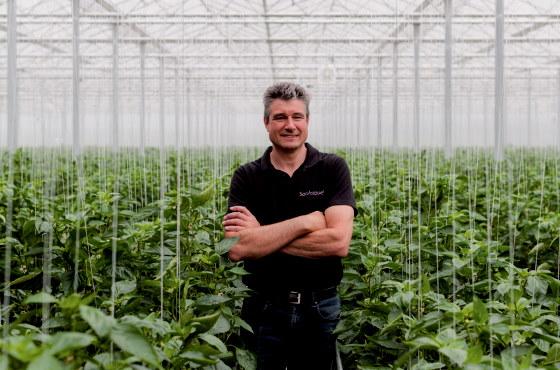 Pepper grower