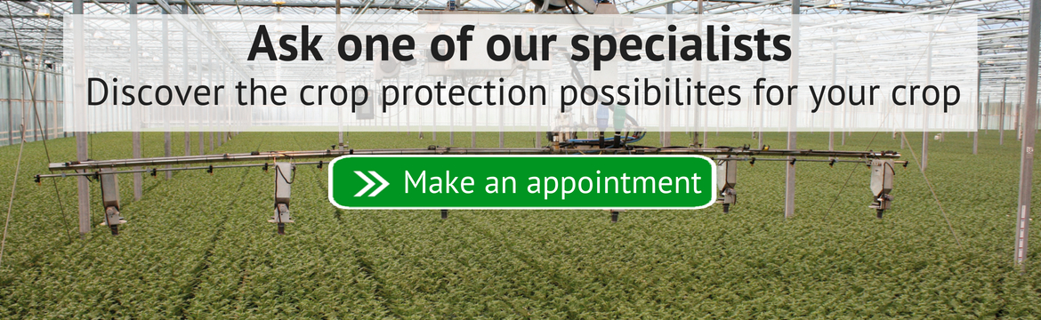 Ask our specialists about the crop protection possibilities in your country