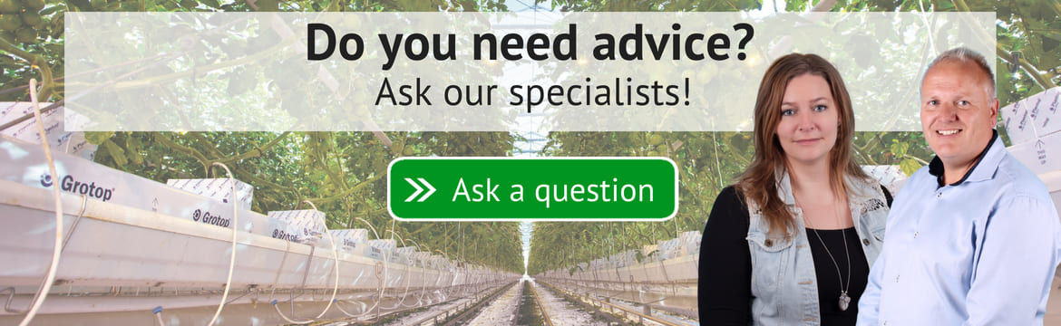 Ask your questions about crop rotation