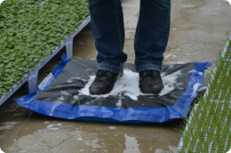 disinfectant mats greenhouse