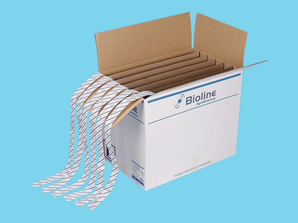 Bugline swirskii (6x100m) box (BL)