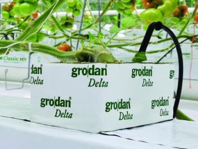 Grodan Delta
