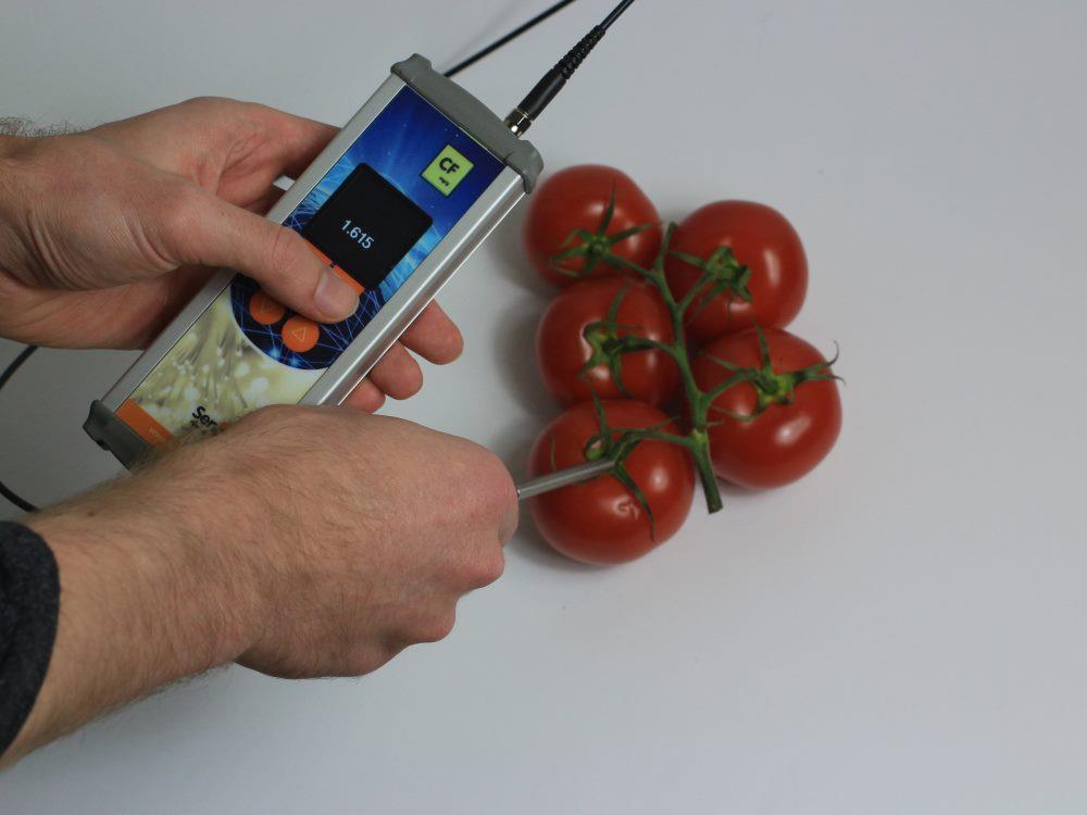 Leaf clip 6mm Probe for Chlorophyll Fluorescence handheld