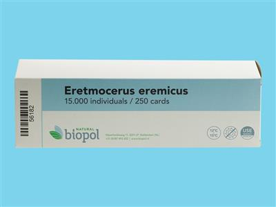 Eretmocerus eremicus cards 15,000 [250 cards x 60 pupae] (BP