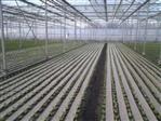Anti weed paper 130cm 500m1